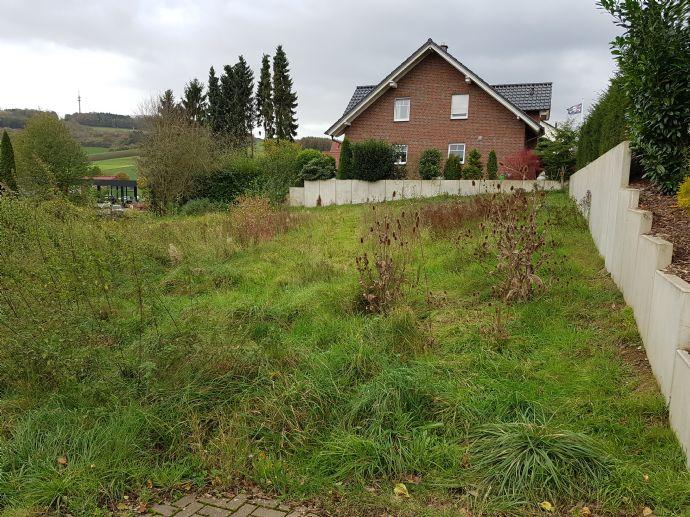 Super Grundstuck In Bad Pyrmont Holzhausen Voll Erschlossen
