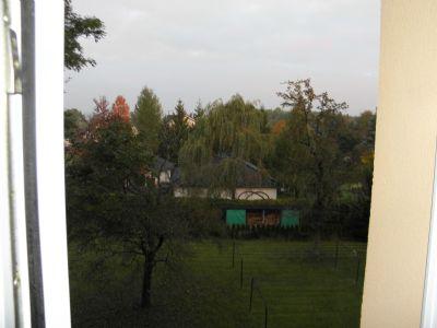 Bild 15