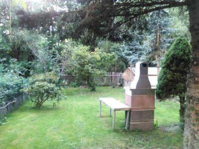 Gartenblick zum Wäldchen