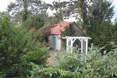 Blick in den Garten von der Terrasse