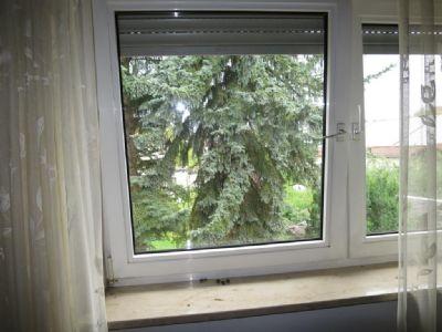 Fenster im OG
