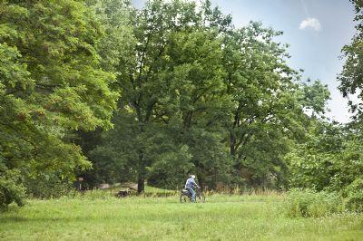 Steinbergpark
