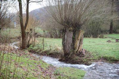 Direkt am Lohrbach - Idyllisch gelegenes Baugrundstück unter Bodenrichtwert im schönen Flörsbachtal