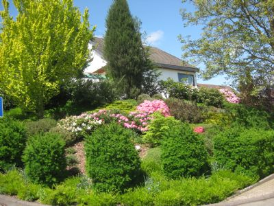 Bild 6 Gartenbereich