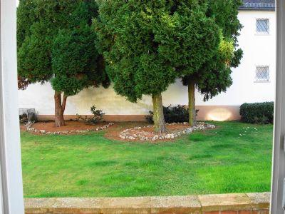 5971 Blick ikn den Garten