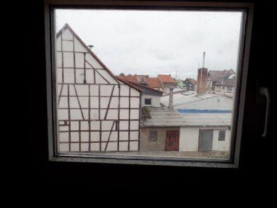 Ausblick von der Dachgaube ...