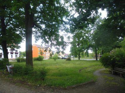 mit grünem Park