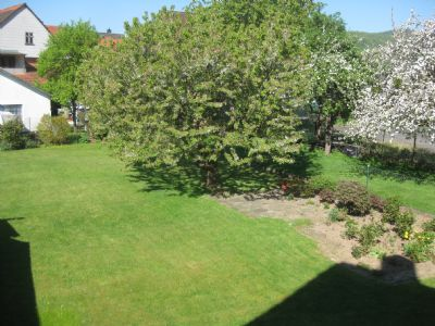 Bild 7 Garten
