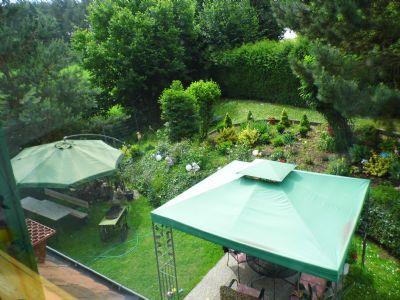 Blick vom Dach in den Garten