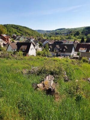 Zwei Traumhafte sonnige Grundstücke mit Blick über Niedersteinbach