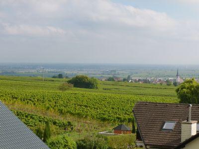 Blick zur Rheinebene