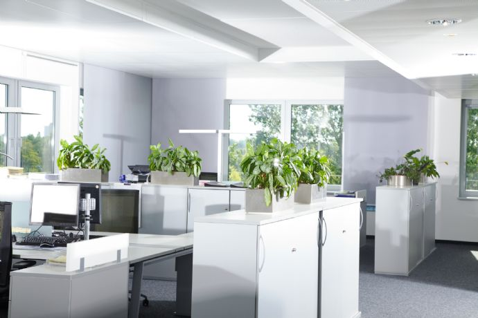 Büro modern einrichten  Neubau von Büro-/Praxisflächen in der Metropolregi... Feucht ...