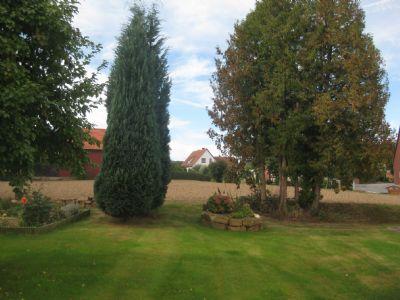 Bild 5 Garten-Idylle