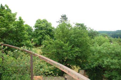 Ausblick vom Turm ins Schlossgrundstück