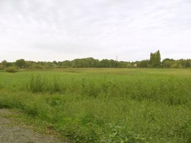 Baugrundstück ca. 550 m² in Schulzendorf für Einfamilienhaus