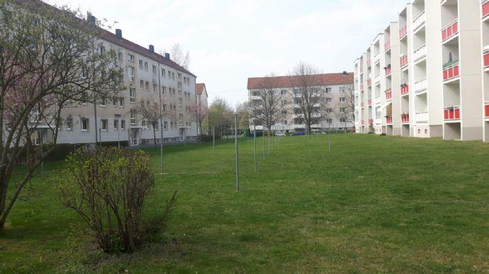 Gemütliche 1 Raum Wohnung Mit Balkon In Radeberg Wohnung Radeberg