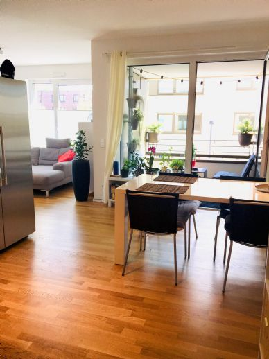 Helle Moderne 2 Zimmer Wohnung Sucht Nachmieter Wohnung Köln