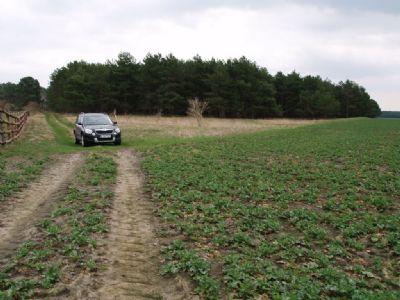 Fläche für Gemüseanbau