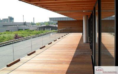 Dachterrasse - Ansicht 2