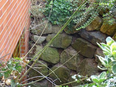 angelegt mit Natursteinen