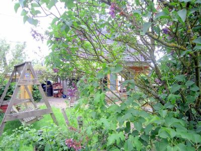 Gartenbereich