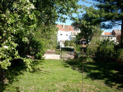 Garten zur gemeinschaftlichen Nutzung