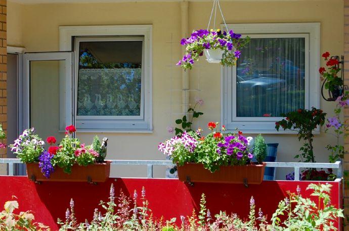 attraktive 2 zi wohnung mit balkon n he g ttinger stadtwald wohnung g ttingen 2a9694k. Black Bedroom Furniture Sets. Home Design Ideas