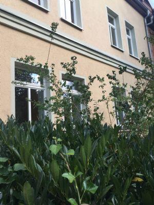Garten zw. Gehweg und Haus