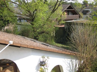 Blick vom Dacheinschnitt