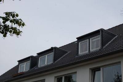 Neues Dach/Gaube 2004