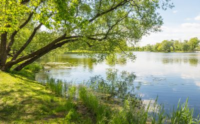 Umgebung vom Grundstück Magdeburg - Möser 18