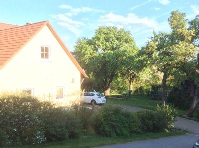 Vorgarten + Garten