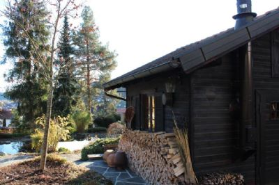 Detailansicht Gartenhaus