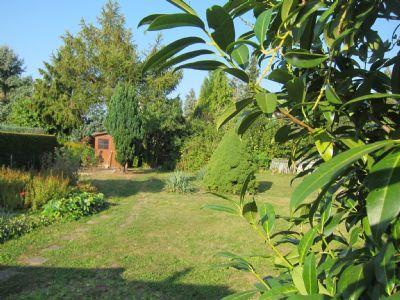 Blick in der Garten