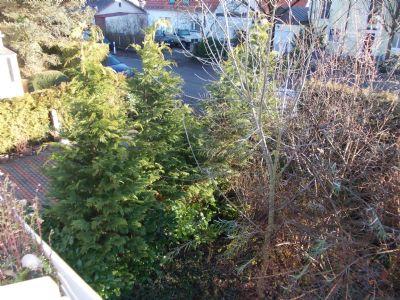 Blick vom Balkon in den Vorgarten