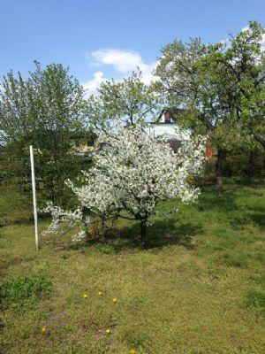 Garten- und Freizeitgrundstück bei München!