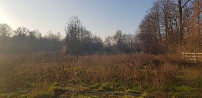 Baugrundstück und großzügiges Wiesenland