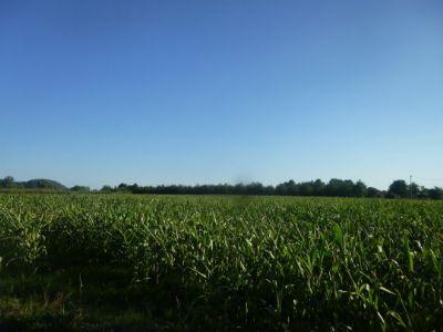 Ausblick vom Grundstück