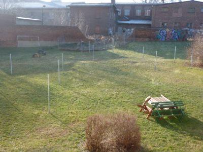 Gemeinschafts-Garten
