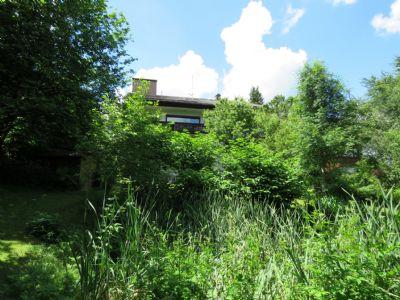 Blick vom Teich zum Haus