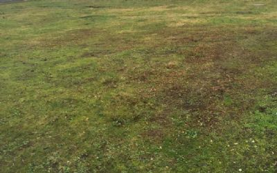 Unbebautes Grundstück in 45770 Marl, Sinsen