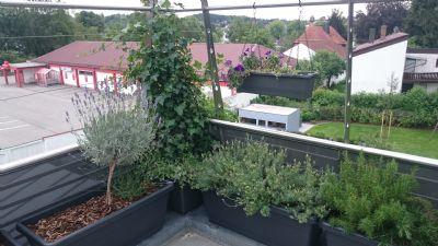 Ausblick Dachterrasse 1