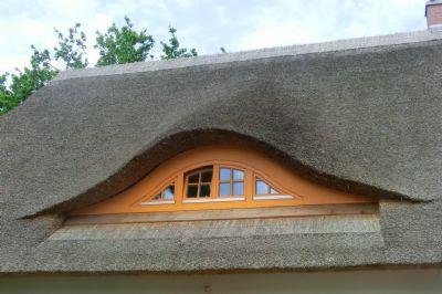 Reetdachhaus Mut zur Farbe