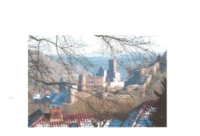 Wertheim,50er-Jahre-Villa mit Blick auf Burg/Taubermündung/Mainschleife/Maintal, 6200 qm Traumgrdst!