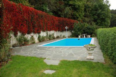 Erfrischung gefällig? Swimming-Pool 8,8 m x 4,6 m