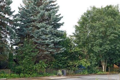 Blick 2 vom Grundstück