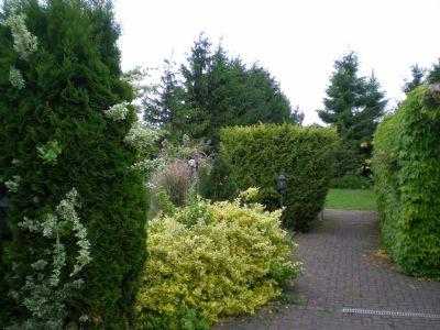Innenhof / Garten