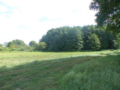 Anteilige Grundstücksfläche an einer Grünfläche in Perdöhl