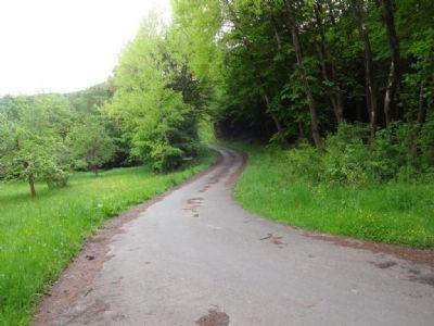 Weg zur Straße