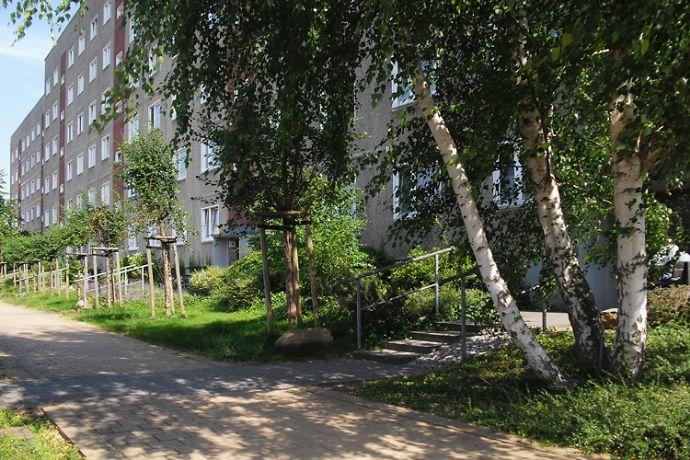 1-Raum-Wohnung am Kupferberg mit unverbautem Blick